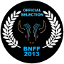 Laurel for the 2013 Buffalo Niagara Film Festival
